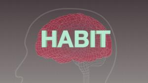 150102180913-habit-gupta-exlarge-169