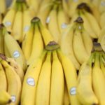 499 New disease threatens worldwide banana production